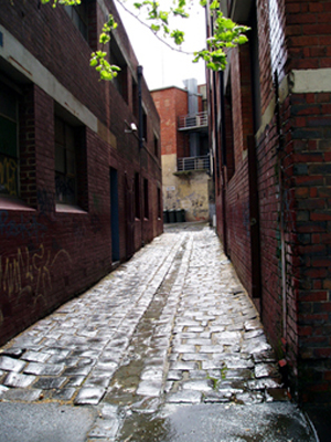 Alley_melb_72_res_small_sept_07_3