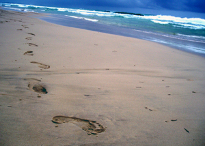 Footprints_strad_is_72_res_small_se