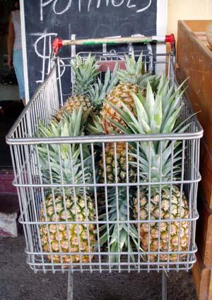 Pineapples_tville_nov_07_internet